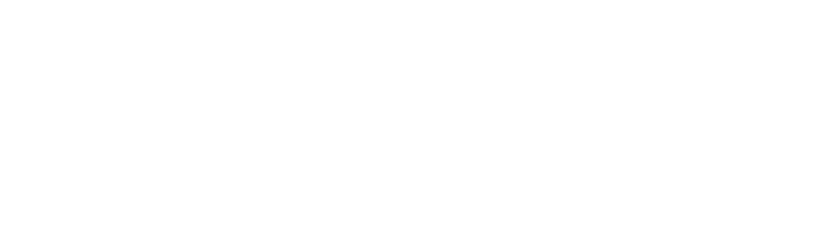 Soul Choice Ministries logo