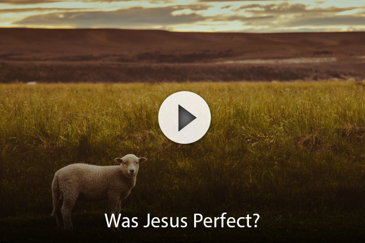 Was Jesus Perfect?